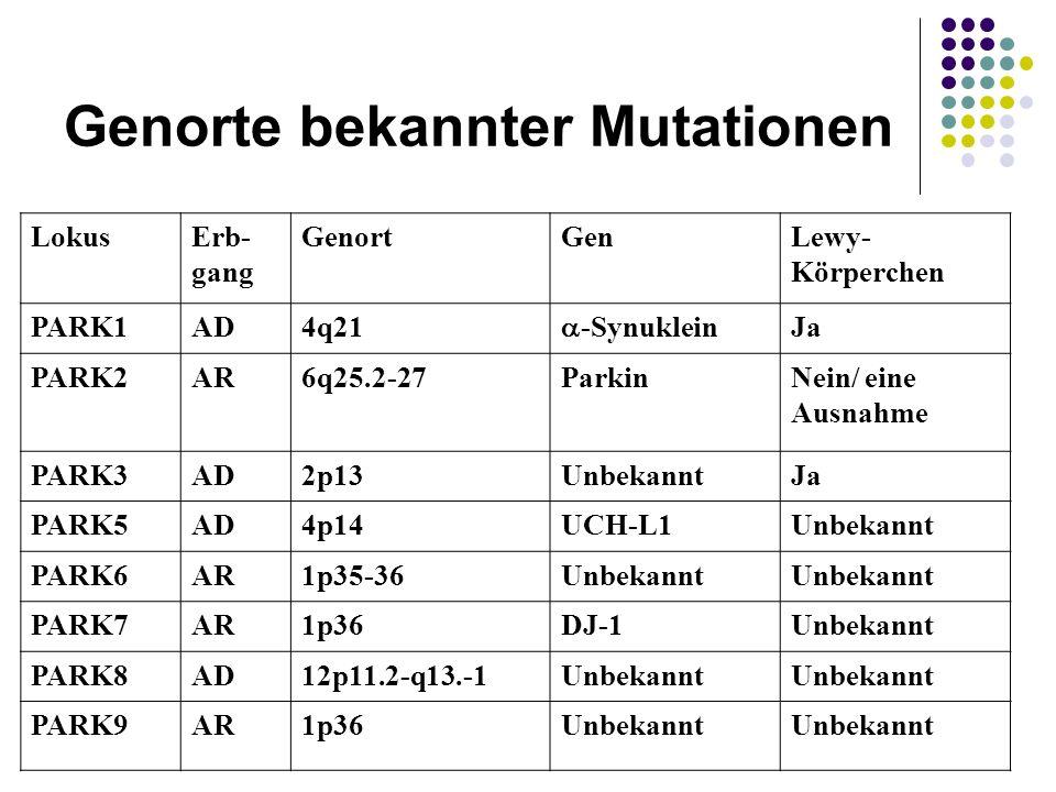 LokusErb- gang GenortGenLewy- Körperchen PARK1AD4q21 -Synuklein Ja PARK2AR6q25.2-27ParkinNein/ eine Ausnahme PARK3AD2p13UnbekanntJa PARK5AD4p14UCH-L1U