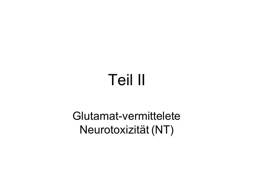 Teil II Glutamat-vermittelete Neurotoxizität (NT)