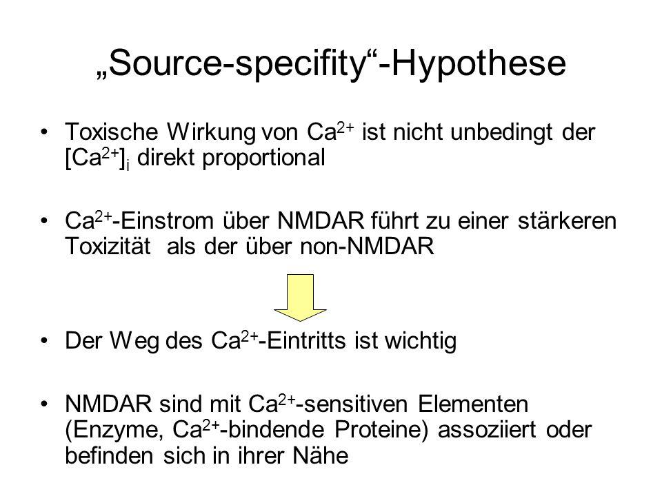 Source-specifity-Hypothese Toxische Wirkung von Ca 2+ ist nicht unbedingt der [Ca 2+ ] i direkt proportional Ca 2+ -Einstrom über NMDAR führt zu einer stärkeren Toxizität als der über non-NMDAR Der Weg des Ca 2+ -Eintritts ist wichtig NMDAR sind mit Ca 2+ -sensitiven Elementen (Enzyme, Ca 2+ -bindende Proteine) assoziiert oder befinden sich in ihrer Nähe
