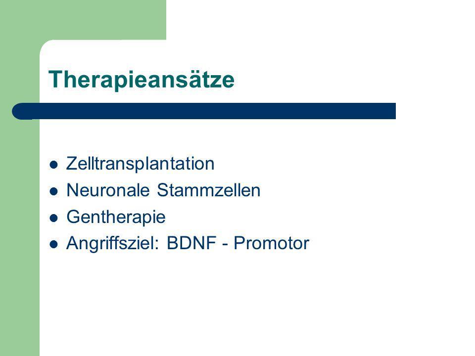 Therapieansätze Zelltransplantation Neuronale Stammzellen Gentherapie Angriffsziel: BDNF - Promotor
