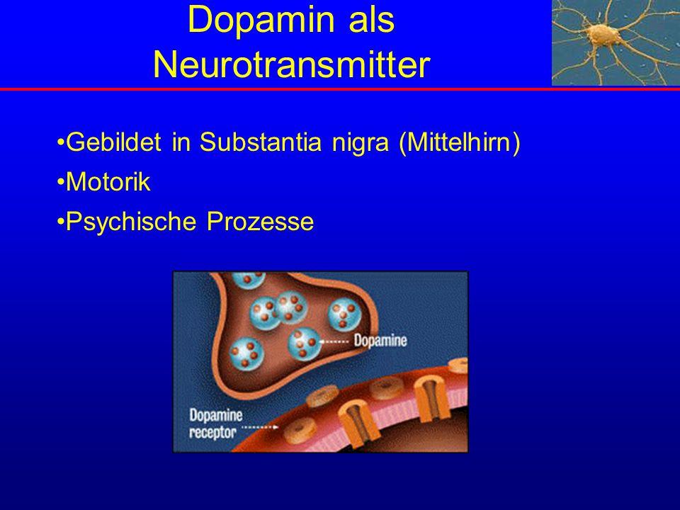 Dopamin als Neurotransmitter Gebildet in Substantia nigra (Mittelhirn) Motorik Psychische Prozesse