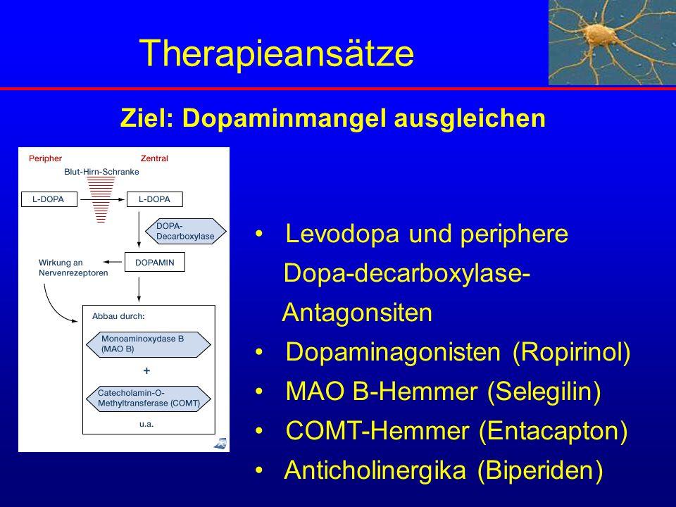 Therapieansätze Levodopa und periphere Dopa-decarboxylase- Antagonsiten Dopaminagonisten (Ropirinol) MAO B-Hemmer (Selegilin) COMT-Hemmer (Entacapton)