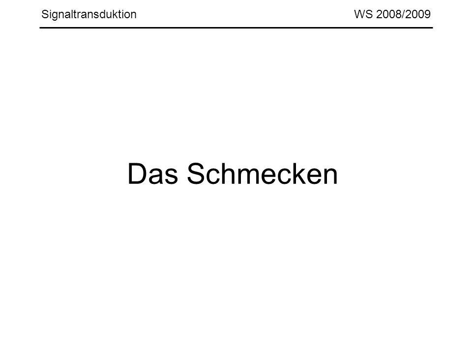 Signaltransduktion WS 2008/2009 Das Schmecken