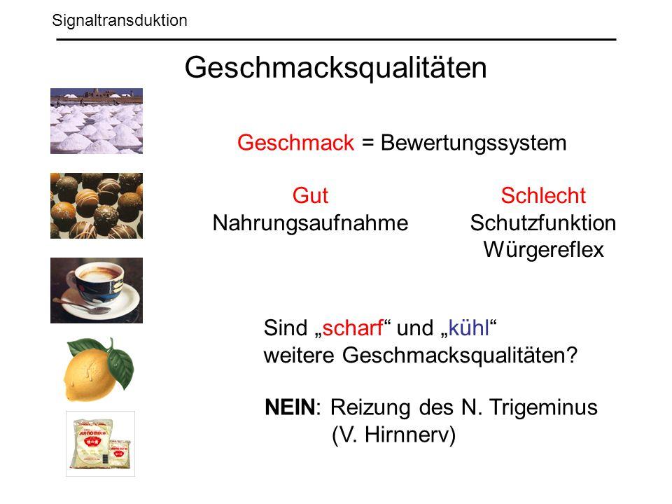 Signaltransduktion Geschmacksqualitäten Sind scharf und kühl weitere Geschmacksqualitäten.