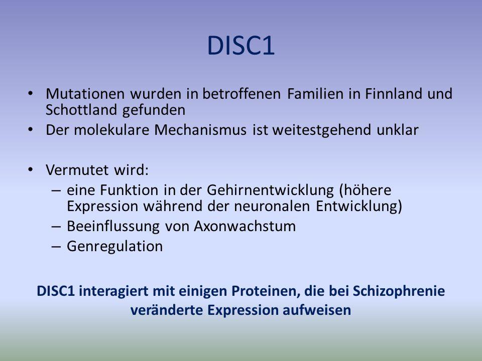 DISC1 Mutationen wurden in betroffenen Familien in Finnland und Schottland gefunden Der molekulare Mechanismus ist weitestgehend unklar Vermutet wird: – eine Funktion in der Gehirnentwicklung (höhere Expression während der neuronalen Entwicklung) – Beeinflussung von Axonwachstum – Genregulation DISC1 interagiert mit einigen Proteinen, die bei Schizophrenie veränderte Expression aufweisen