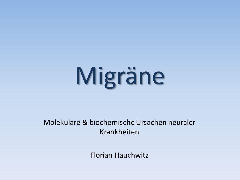Migräne Molekulare & biochemische Ursachen neuraler Krankheiten Florian Hauchwitz