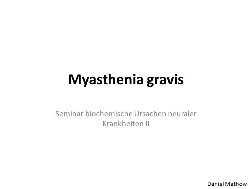 Ursache der Myasthenia gravis Reduzierte Anzahl der ACh-Rezeptoren Zerstörung der postsynaptischen Membran Eigene Antikörper binden ACh- Rezeptoren (diese werden schneller abgebaut) Vermindertes Endplattenpotenzial; funktionsgestörte Muskeln Abbau der postsynaptischen Membran durch das Komplementsystem Aber auch: genetische Defekte; Mutationen in Genen für AChR