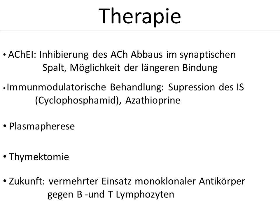 Therapie AChEI: Inhibierung des ACh Abbaus im synaptischen Spalt, Möglichkeit der längeren Bindung Immunmodulatorische Behandlung: Supression des IS (
