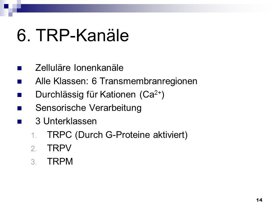14 6. TRP-Kanäle Zelluläre Ionenkanäle Alle Klassen: 6 Transmembranregionen Durchlässig für Kationen (Ca 2+ ) Sensorische Verarbeitung 3 Unterklassen