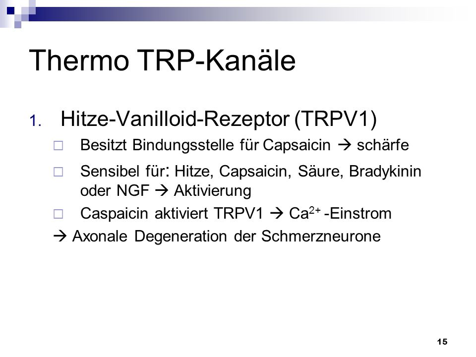 15 Thermo TRP-Kanäle 1. Hitze-Vanilloid-Rezeptor (TRPV1) Besitzt Bindungsstelle für Capsaicin schärfe Sensibel für : Hitze, Capsaicin, Säure, Bradykin