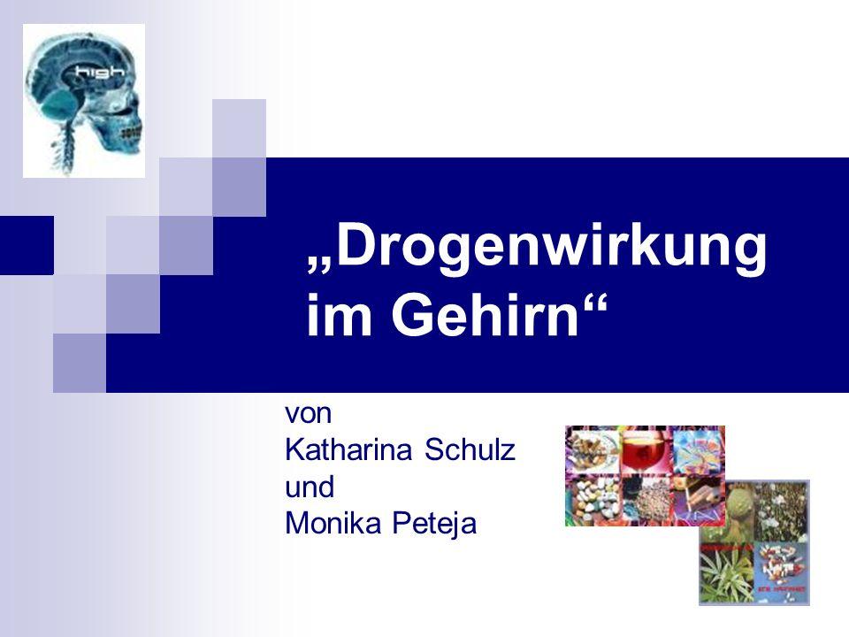 Drogenwirkung im Gehirn von Katharina Schulz und Monika Peteja