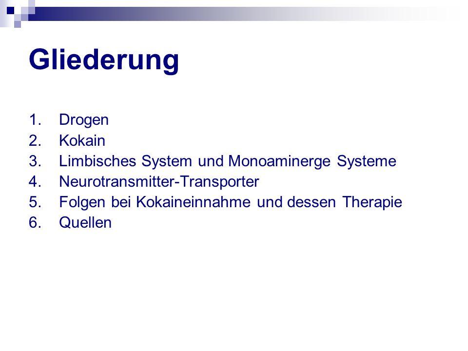 Gliederung 1. Drogen 2. Kokain 3. Limbisches System und Monoaminerge Systeme 4. Neurotransmitter-Transporter 5. Folgen bei Kokaineinnahme und dessen T