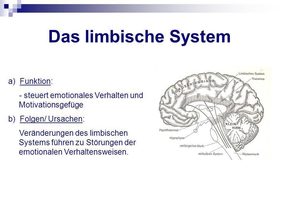 Das limbische System a) Funktion: - steuert emotionales Verhalten und Motivationsgefüge b) Folgen/ Ursachen: Veränderungen des limbischen Systems führ