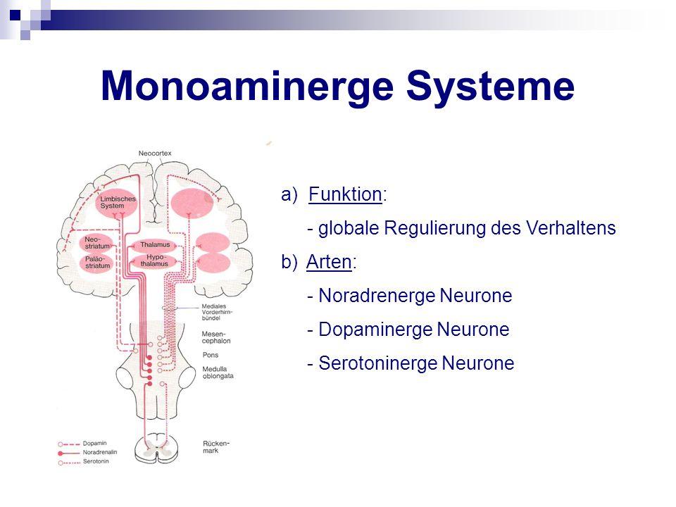 Monoamine - Catecholamine Adrenalin, Noradrenalin Dopamin - Serotonin