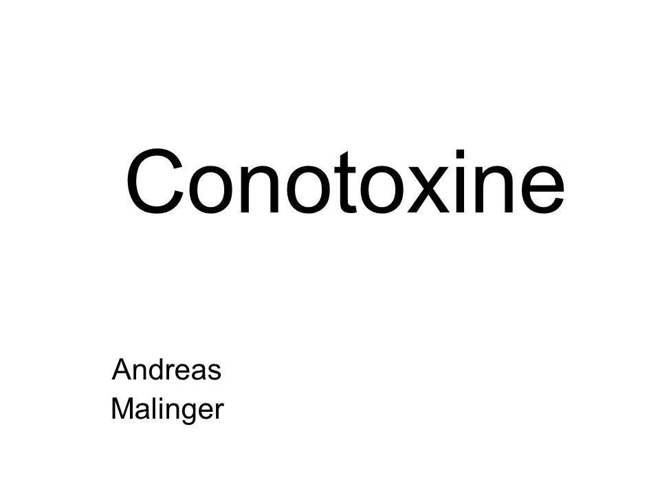 Gliederung Einleitung Wie funktioniert die Neurotransmitterausschüttung Conotoxine im Allgemeinen Synthese Zielmoleküle der versch.