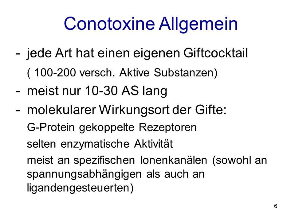 7 - 2 Klassen: disulfidreich und disulfidarm -disulfidreiche werden nochmals in Superfamilien eingeordnet -dies geschieht anhand des spezifischen Cystein Musters Conotoxine Allgemein