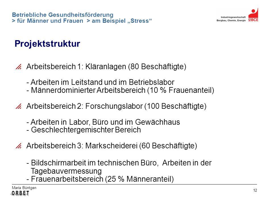 Maria Büntgen 12 Betriebliche Gesundheitsförderung > für Männer und Frauen > am Beispiel Stress Projektstruktur Arbeitsbereich 1: Kläranlagen (80 Besc