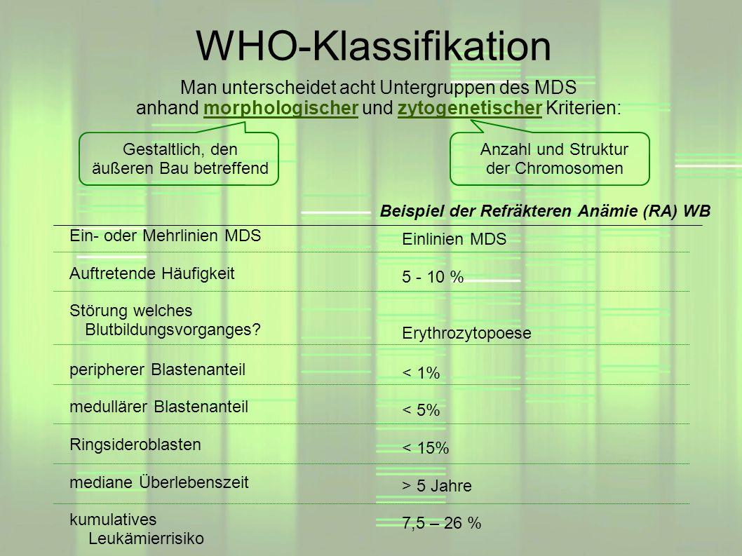 WHO-Klassifikation Man unterscheidet acht Untergruppen des MDS anhand morphologischer und zytogenetischer Kriterien: Gestaltlich, den äußeren Bau betr