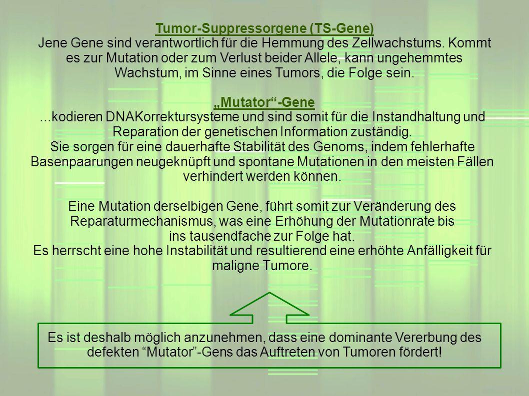 Mutator-Gene...kodieren DNAKorrektursysteme und sind somit für die Instandhaltung und Reparation der genetischen Information zuständig. Sie sorgen für