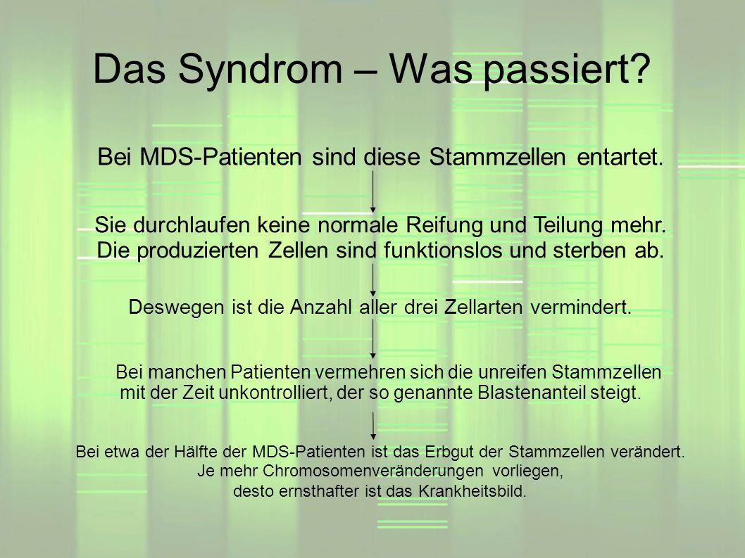 Das Syndrom – Was passiert? Bei etwa der Hälfte der MDS-Patienten ist das Erbgut der Stammzellen verändert. Je mehr Chromosomenveränderungen vorliegen