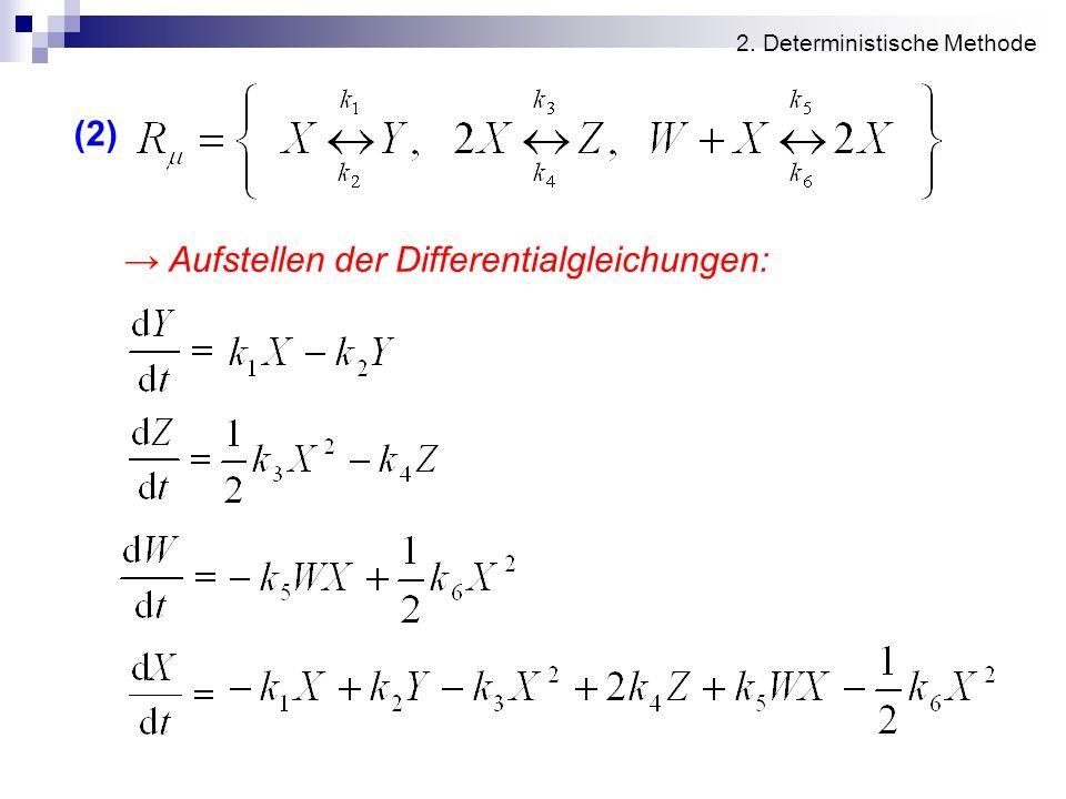 2. Deterministische Methode (2) Aufstellen der Differentialgleichungen: