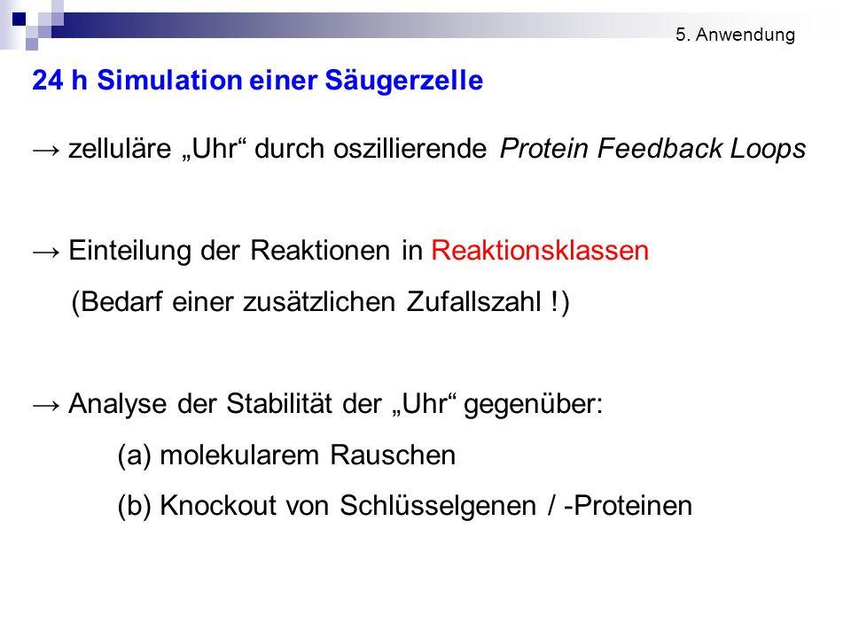 24 h Simulation einer Säugerzelle zelluläre Uhr durch oszillierende Protein Feedback Loops Einteilung der Reaktionen in Reaktionsklassen (Bedarf einer