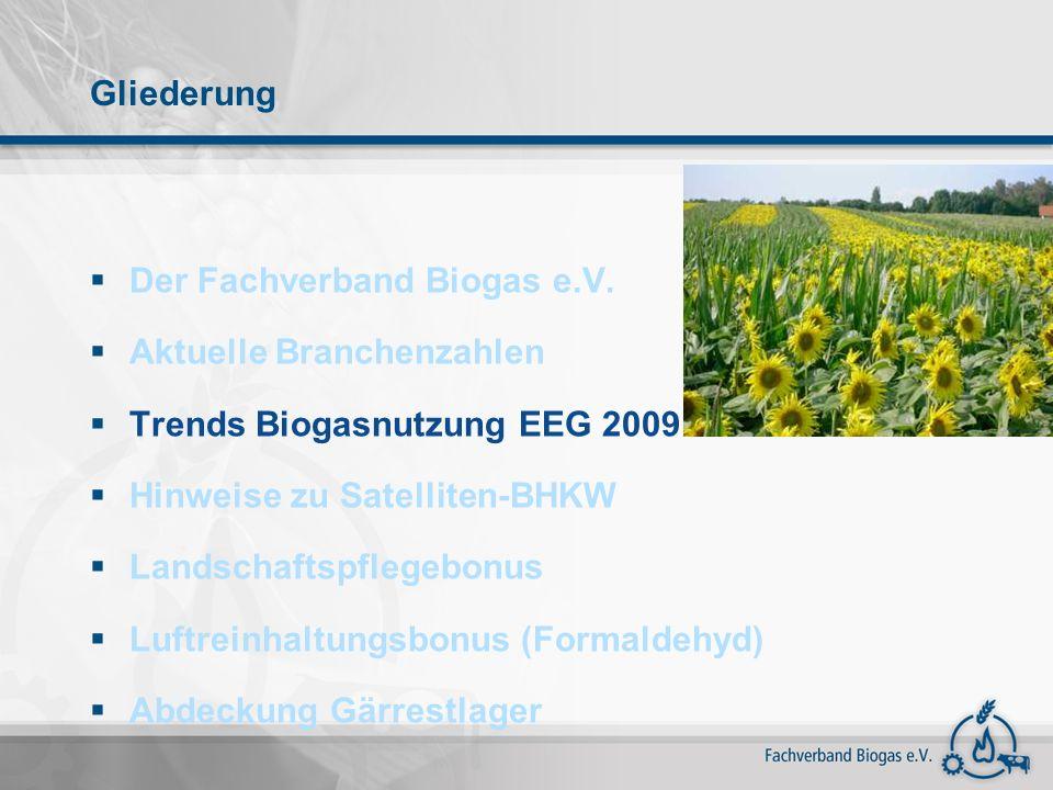 Gliederung Der Fachverband Biogas e.V. Aktuelle Branchenzahlen Trends Biogasnutzung EEG 2009 Hinweise zu Satelliten-BHKW Landschaftspflegebonus Luftre