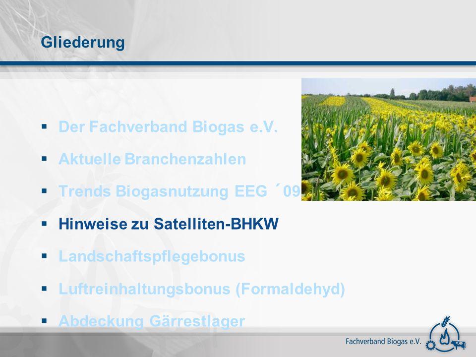Gliederung Der Fachverband Biogas e.V. Aktuelle Branchenzahlen Trends Biogasnutzung EEG ´09 Hinweise zu Satelliten-BHKW Landschaftspflegebonus Luftrei