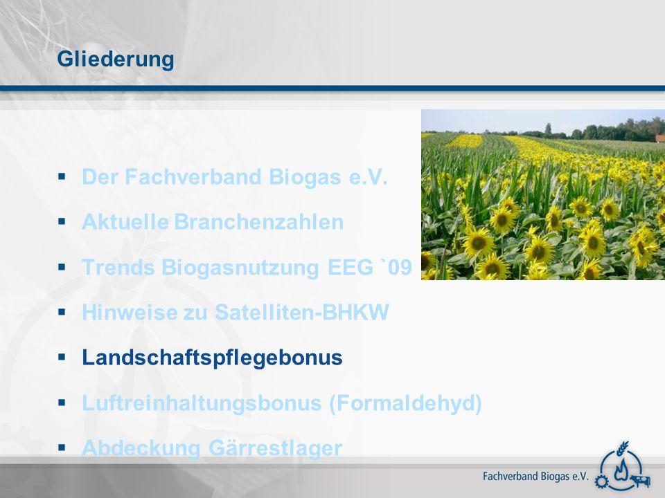 Gliederung Der Fachverband Biogas e.V. Aktuelle Branchenzahlen Trends Biogasnutzung EEG `09 Hinweise zu Satelliten-BHKW Landschaftspflegebonus Luftrei