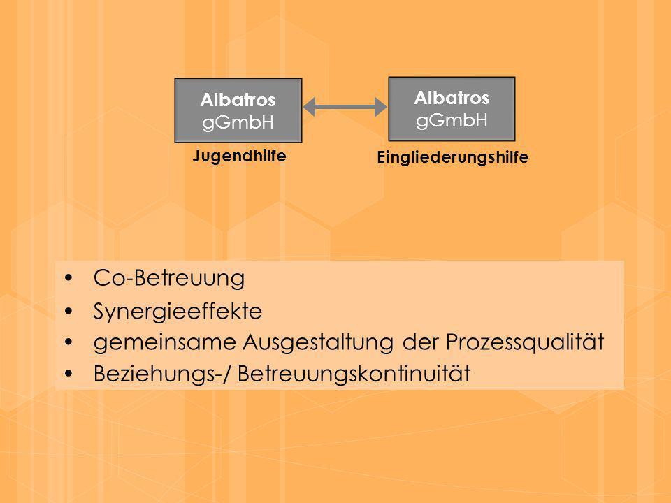 Co-Betreuung Albatros gGmbH Albatros gGmbH Jugendhilfe Eingliederungshilfe Synergieeffekte gemeinsame Ausgestaltung der Prozessqualität Beziehungs-/ B