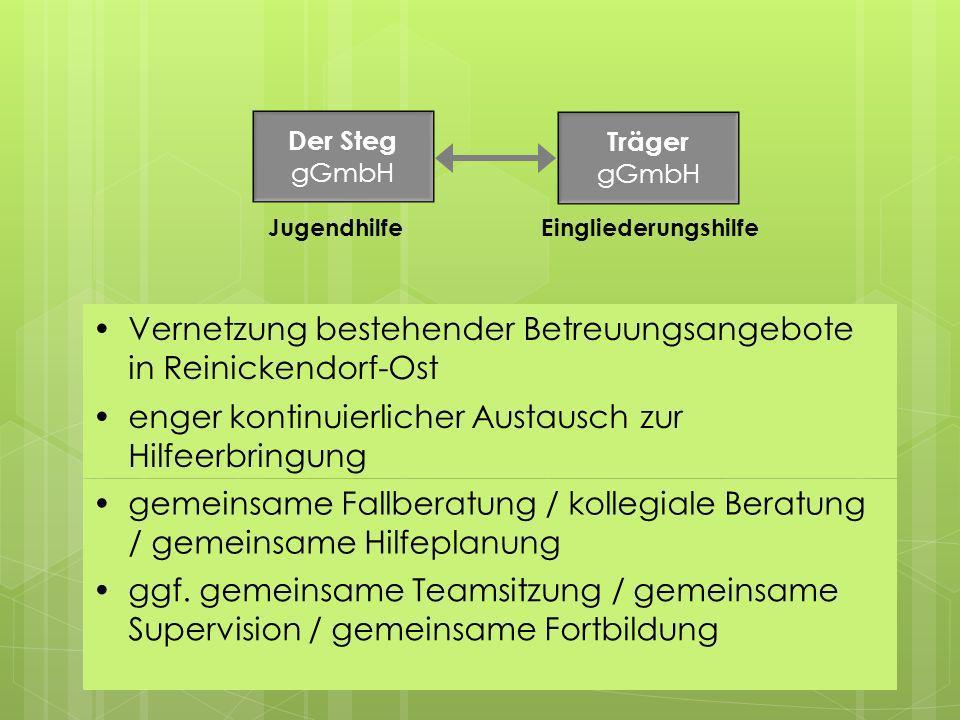 Vernetzung bestehender Betreuungsangebote in Reinickendorf-Ost Der Steg gGmbH Träger gGmbH JugendhilfeEingliederungshilfe enger kontinuierlicher Austa