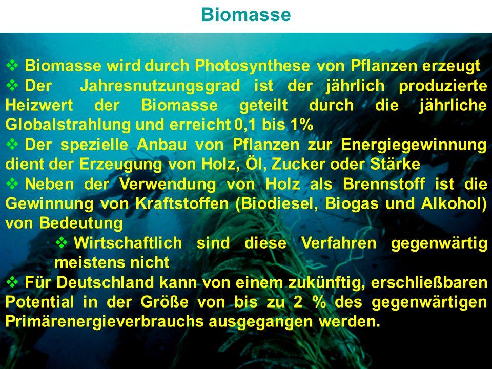 GRUNDLAGEN der ENERGIETECHNIKENERGIEFORMEN und ENERGIEQUELLEN Biomasse Biomasse wird durch Photosynthese von Pflanzen erzeugt Der Jahresnutzungsgrad ist der jährlich produzierte Heizwert der Biomasse geteilt durch die jährliche Globalstrahlung und erreicht 0,1 bis 1% Der spezielle Anbau von Pflanzen zur Energiegewinnung dient der Erzeugung von Holz, Öl, Zucker oder Stärke Neben der Verwendung von Holz als Brennstoff ist die Gewinnung von Kraftstoffen (Biodiesel, Biogas und Alkohol) von Bedeutung Wirtschaftlich sind diese Verfahren gegenwärtig meistens nicht Für Deutschland kann von einem zukünftig, erschließbaren Potential in der Größe von bis zu 2 % des gegenwärtigen Primärenergieverbrauchs ausgegangen werden.