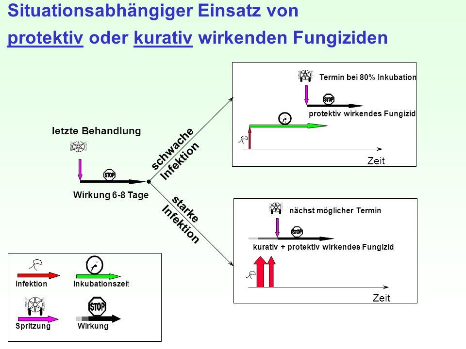 letzte Behandlung Wirkung 6-8 Tage Spritzung InkubationszeitInfektion Wirkung 3 6 9 12 schwache Infektion protektiv wirkendes Fungizid Zeit Termin bei