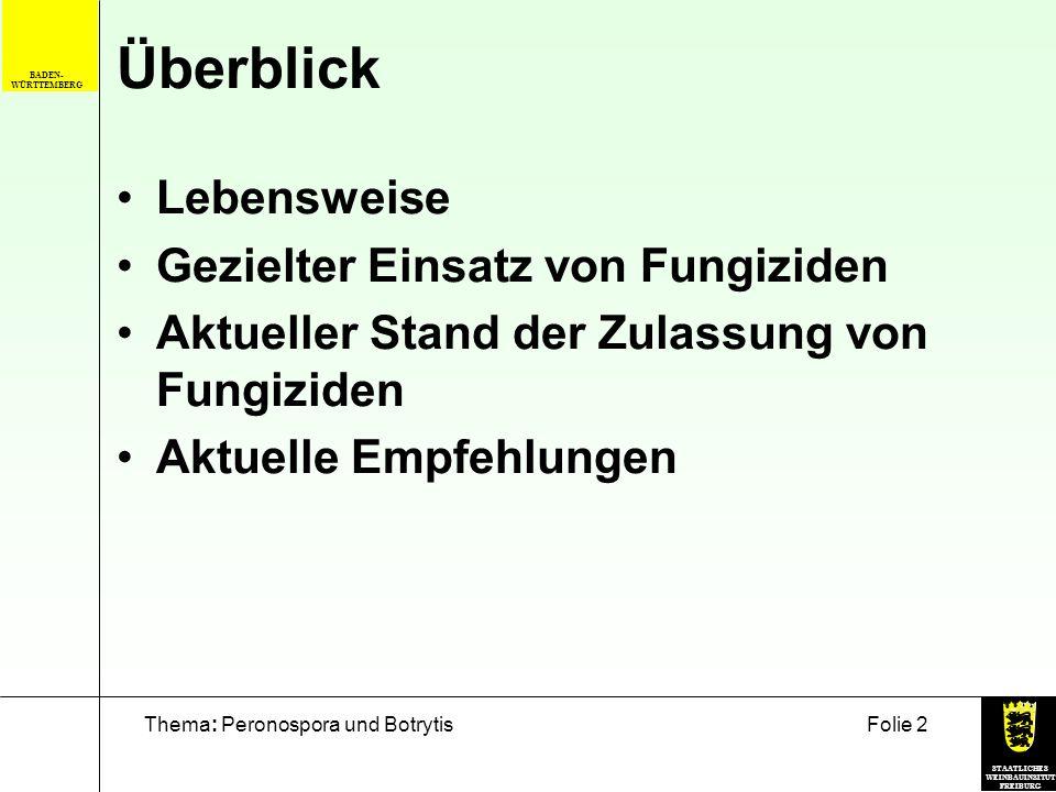 STAATLICHES WEINBAUINSITUT FREIBURG Thema: Peronospora und BotrytisFolie 2 BADEN- WÜRTTEMBERG Überblick Lebensweise Gezielter Einsatz von Fungiziden A