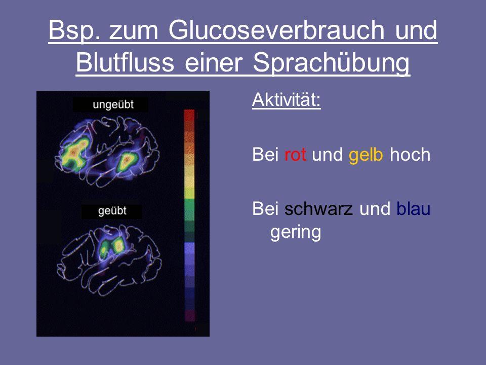 Bsp. zum Glucoseverbrauch und Blutfluss einer Sprachübung Aktivität: Bei rot und gelb hoch Bei schwarz und blau gering