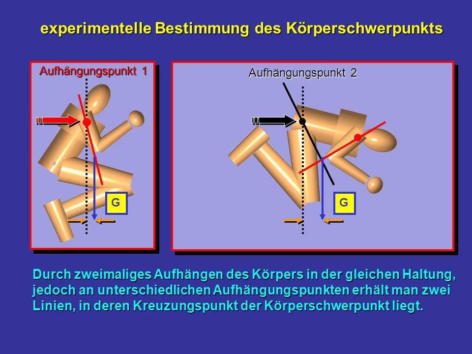 experimentelle Bestimmung des Körperschwerpunkts Durch zweimaliges Aufhängen des Körpers in der gleichen Haltung, jedoch an unterschiedlichen Aufhängu