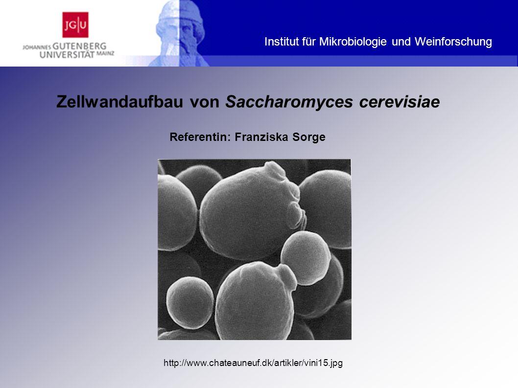 Aufbau der Zellwand - Mannoproteine Harrison JS, Rose AH Second Edition.