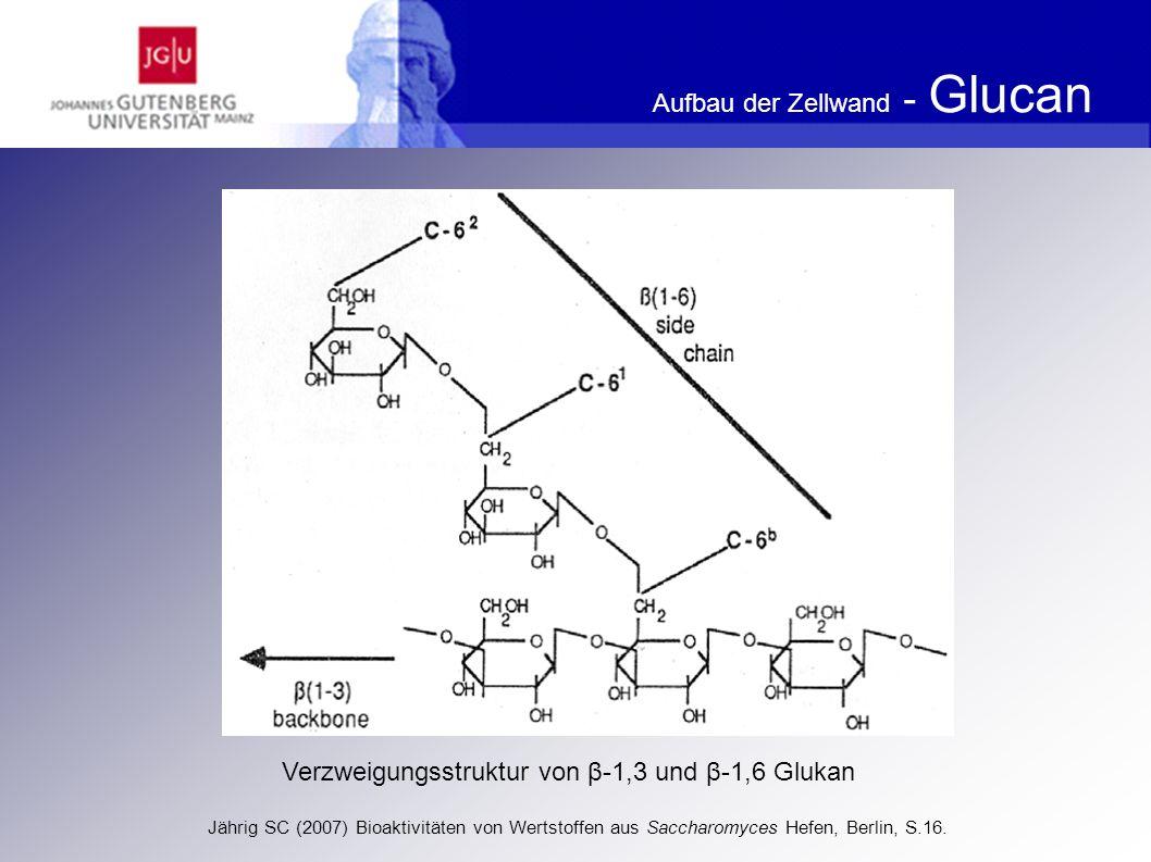Aufbau der Zellwand - Glucan Zentrale Rolle von ß-1,6-Glucan im Zellwandnetzwerk (in Anlehnung an Kollar et al.