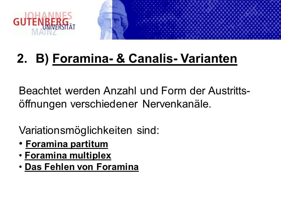 2.B) Foramina- & Canalis- Varianten Beachtet werden Anzahl und Form der Austritts- öffnungen verschiedener Nervenkanäle. Variationsmöglichkeiten sind: