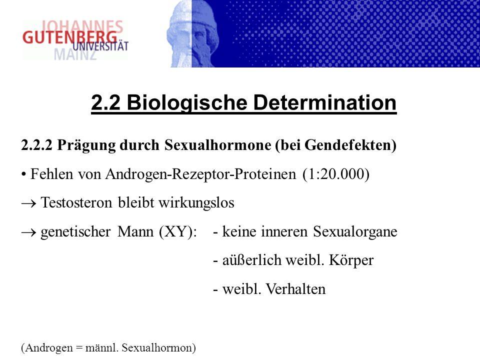 2.2 Biologische Determination 2.2.2 Prägung durch Sexualhormone (bei Gendefekten) Fehlen von Androgen-Rezeptor-Proteinen (1:20.000) Testosteron bleibt