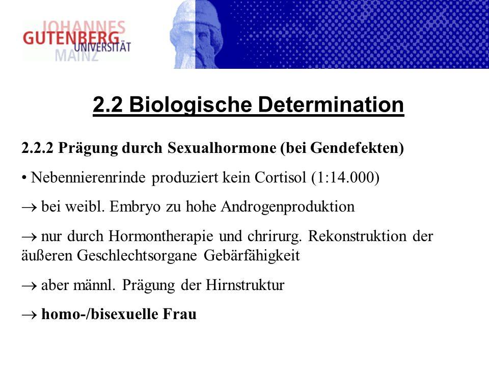 2.2 Biologische Determination 2.2.2 Prägung durch Sexualhormone (bei Gendefekten) Nebennierenrinde produziert kein Cortisol (1:14.000) bei weibl. Embr