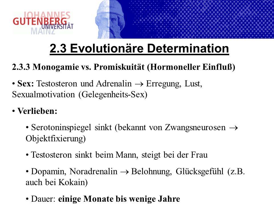2.3 Evolutionäre Determination 2.3.3 Monogamie vs. Promiskuität (Hormoneller Einfluß) Sex: Testosteron und Adrenalin Erregung, Lust, Sexualmotivation