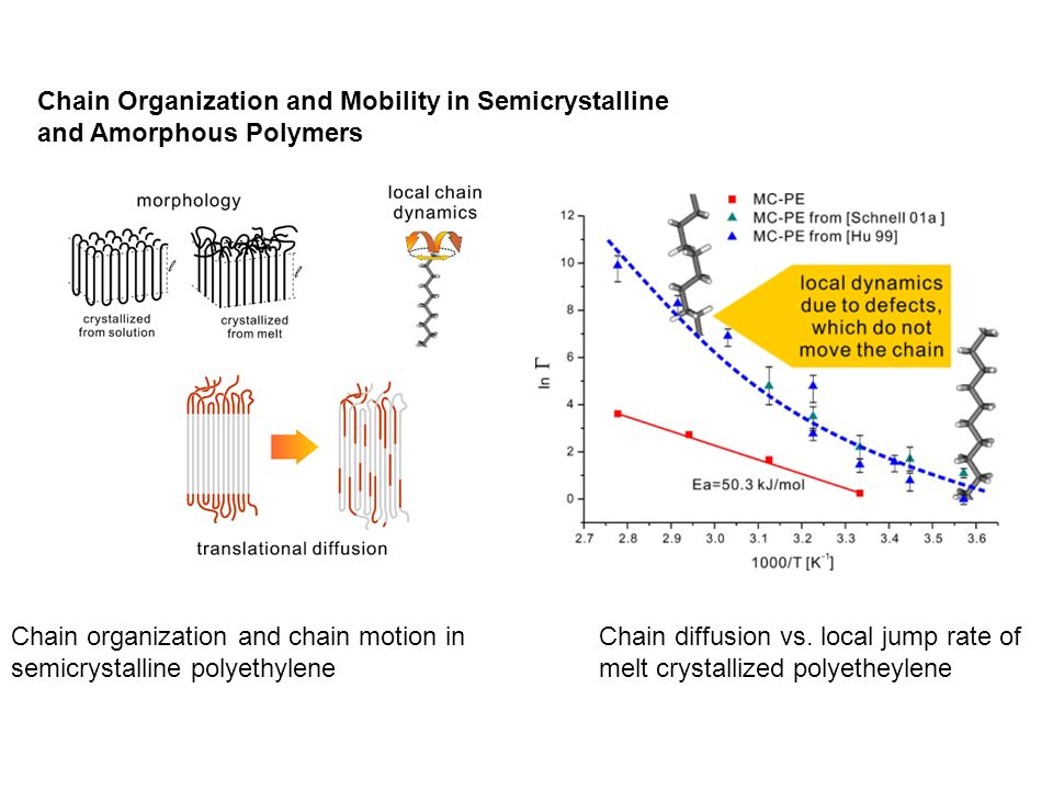 Chain Organization and Mobility in Semicrystalline and Amorphous Polymers Chain organization and chain motion in semicrystalline polyethylene Chain di