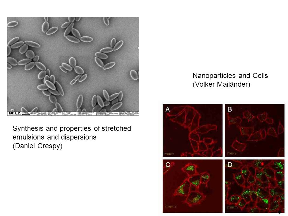 Synthesis and properties of stretched emulsions and dispersions (Daniel Crespy) Nanoparticles and Cells (Volker Mailänder)