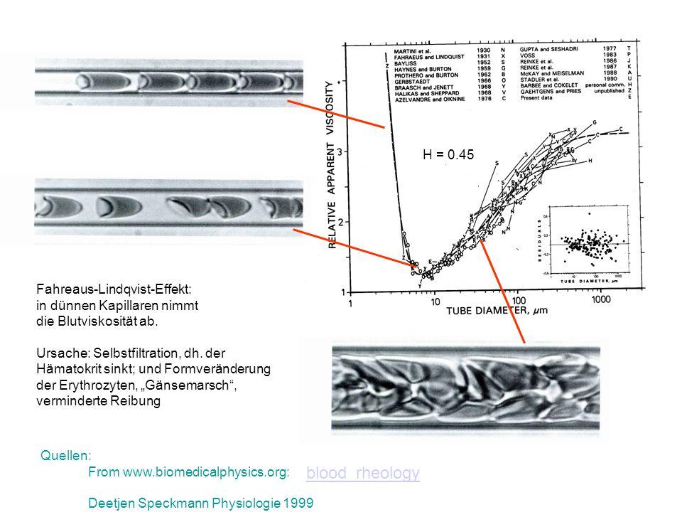 Quellen: From www.biomedicalphysics.org: Deetjen Speckmann Physiologie 1999 Fahreaus-Lindqvist-Effekt: in dünnen Kapillaren nimmt die Blutviskosität a