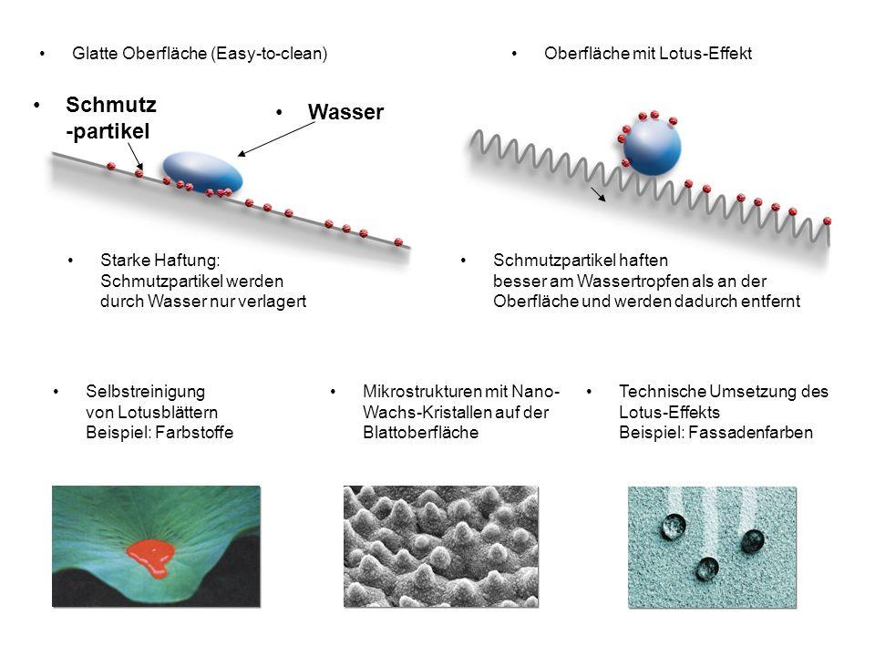 Selbstreinigung von Lotusblättern Beispiel: Farbstoffe Mikrostrukturen mit Nano- Wachs-Kristallen auf der Blattoberfläche Technische Umsetzung des Lot