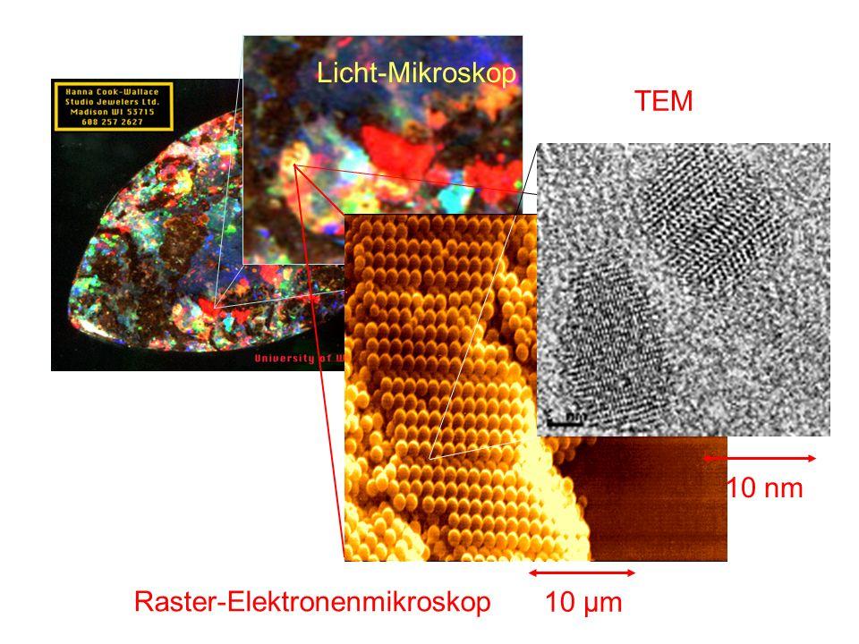 Licht-Mikroskop 1 mm 10 µm Raster-Elektronenmikroskop 10 nm TEM