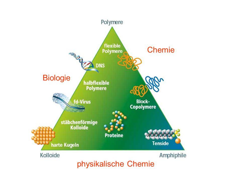 Biologie Chemie physikalische Chemie