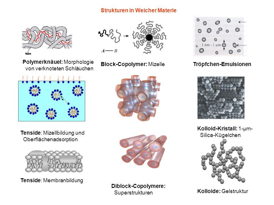 Strukturen in Weicher Materie Polymerknäuel: Morphologie von verknoteten Schläuchen Block-Copolymer: Mizelle Tenside: Mizellbildung und Oberflächenadsorption Tenside: Membranbildung Tröpfchen-Emulsionen Kolloid-Kristall: 1-μm- Silica-Kügelchen Kolloide: Gelstruktur Diblock-Copolymere: Superstrukturen