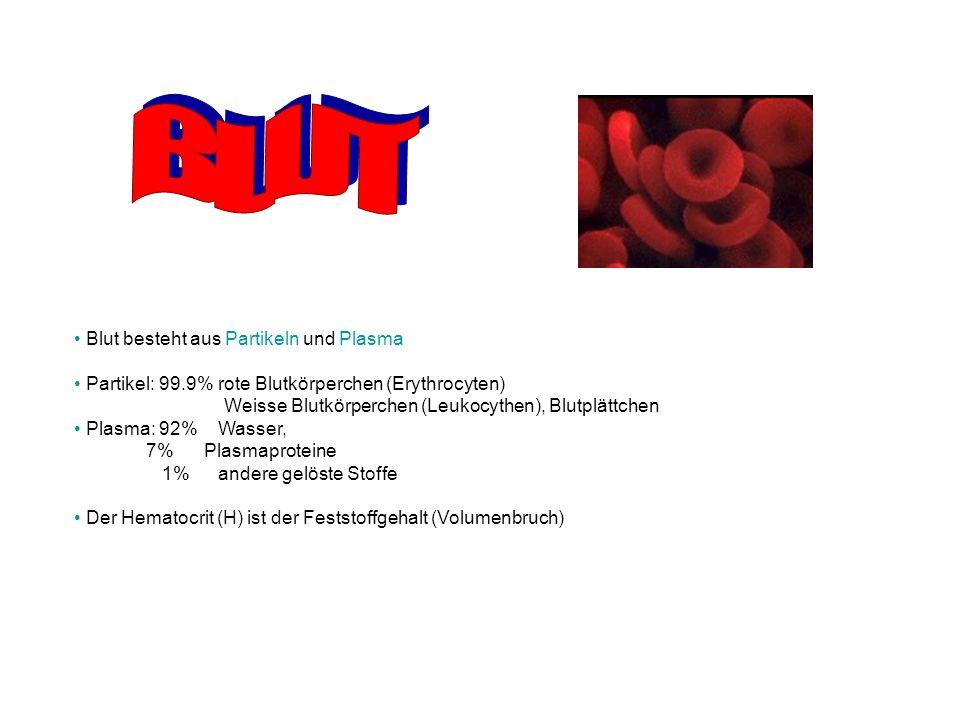 Blut besteht aus Partikeln und Plasma Partikel: 99.9% rote Blutkörperchen (Erythrocyten) Weisse Blutkörperchen (Leukocythen), Blutplättchen Plasma: 92% Wasser, 7% Plasmaproteine 1% andere gelöste Stoffe Der Hematocrit (H) ist der Feststoffgehalt (Volumenbruch)